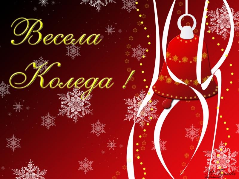 Весела Коледа, приятели